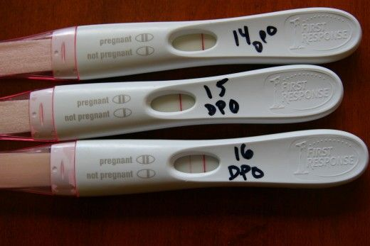 Pregnancy Test Accuracy A First Response Early Response pink dye test: the test showed a very faint positive at 14 and 15 days post-ovulation, but developed a stro...