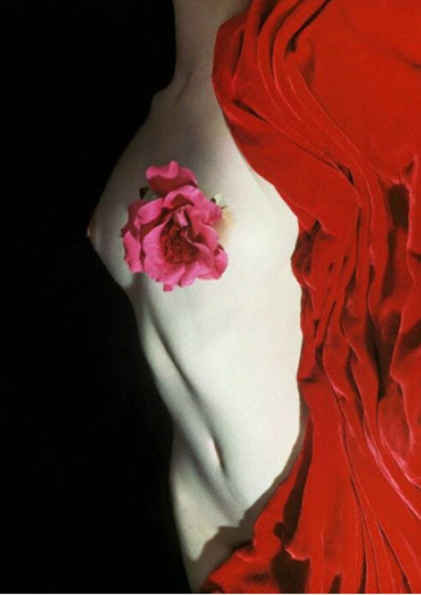 Nude with Camelia by Erwin Blumenfeld