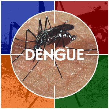Guide for Dengue Causes and Prevention