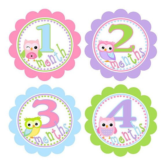 Baby Month Milestone Stickers Monthly Newborn Stickers ...