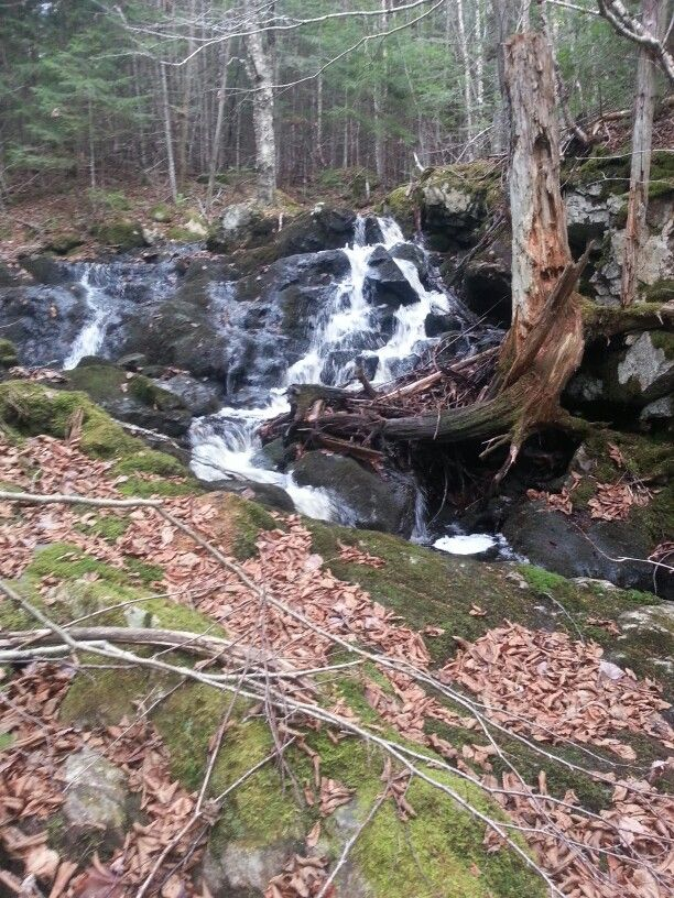 Unknown falls near ravine road, Hampton NB