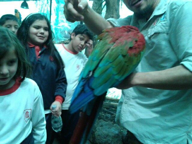 Eso es un dia libre en selva viva con mis compañeros y el colegioo!!!!