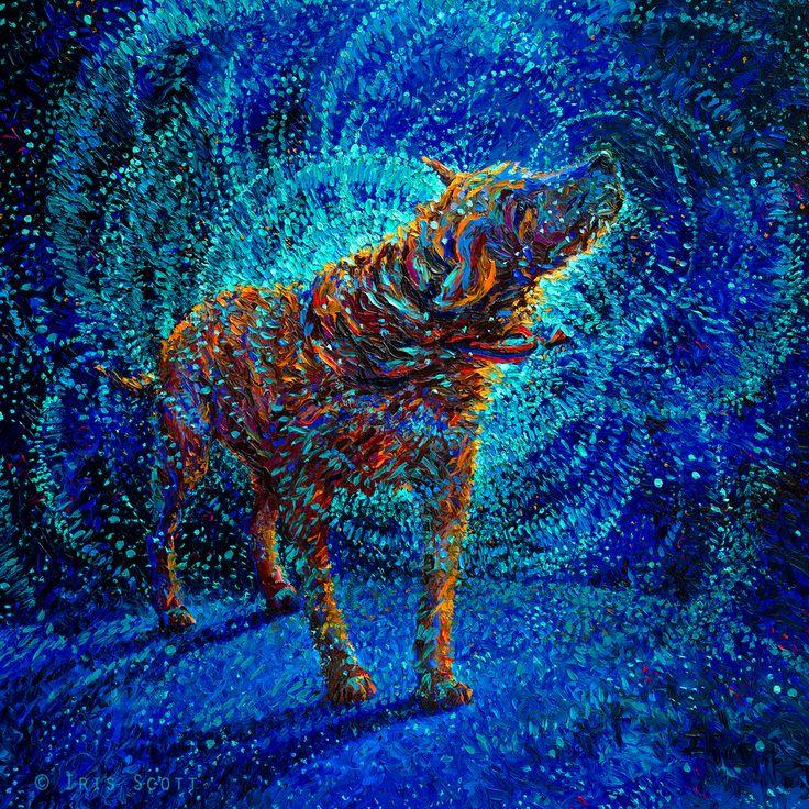 Iris Scott :: shakin dogs - Polarized