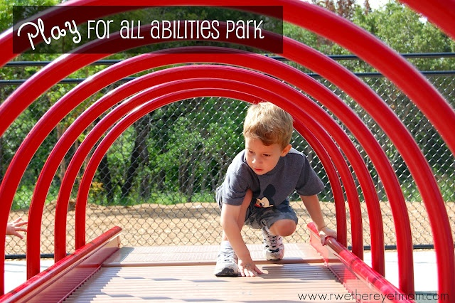 Amazing new park in Round Rock, Texas = Made for EVERY ONE and there is so much to do!