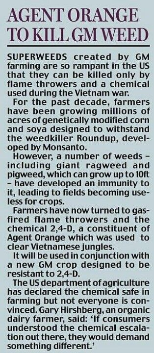 Monsanto....Dear God help us! Most humans are clueless this is going on. We don't have much time left!