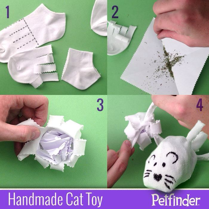 17 best images about cat toys hiding spots cat haven on for Best homemade cat toys