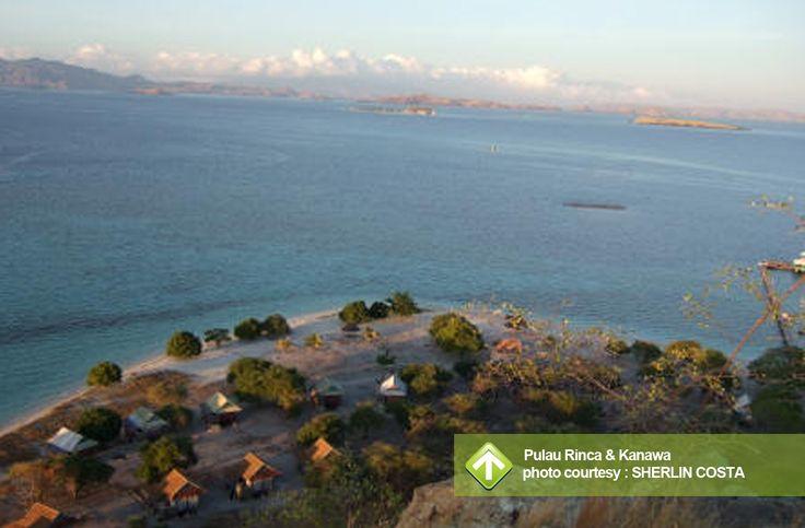 Pulau Rinca & Kanawa August 17 - 19, 2013 Link : http://triptr.us/t6