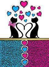 Imagens Gatos...
