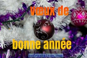 Learn how to make New Year wishes in French. Practice subjunctive mood, learn new vocabulary and listen to a short monologue of a french humorist Anne Roumanoff.