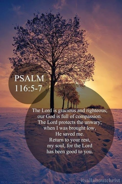 """""""Gracious is the Lord, and righteous; yea, our God is merciful. The Lord preserveth the simple; I was brought low, and he helped me. Return unto thy rest, O my soul; for thou hast delivered my soul from,death, mine eyes from tears, and my feet from falling."""" Psalm 116:5-8 KJV"""