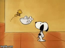 Woodstock want drink of water./lisa | image tagged in gifs | made w/ Imgflip video-to-gif maker