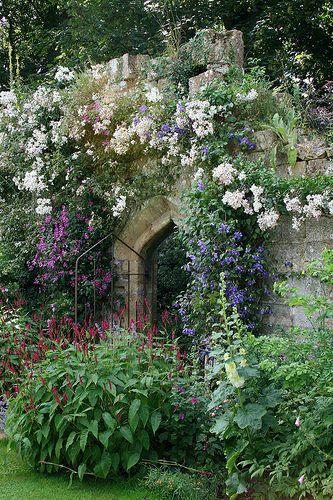 秘密の花園。メアリーのガーデン。