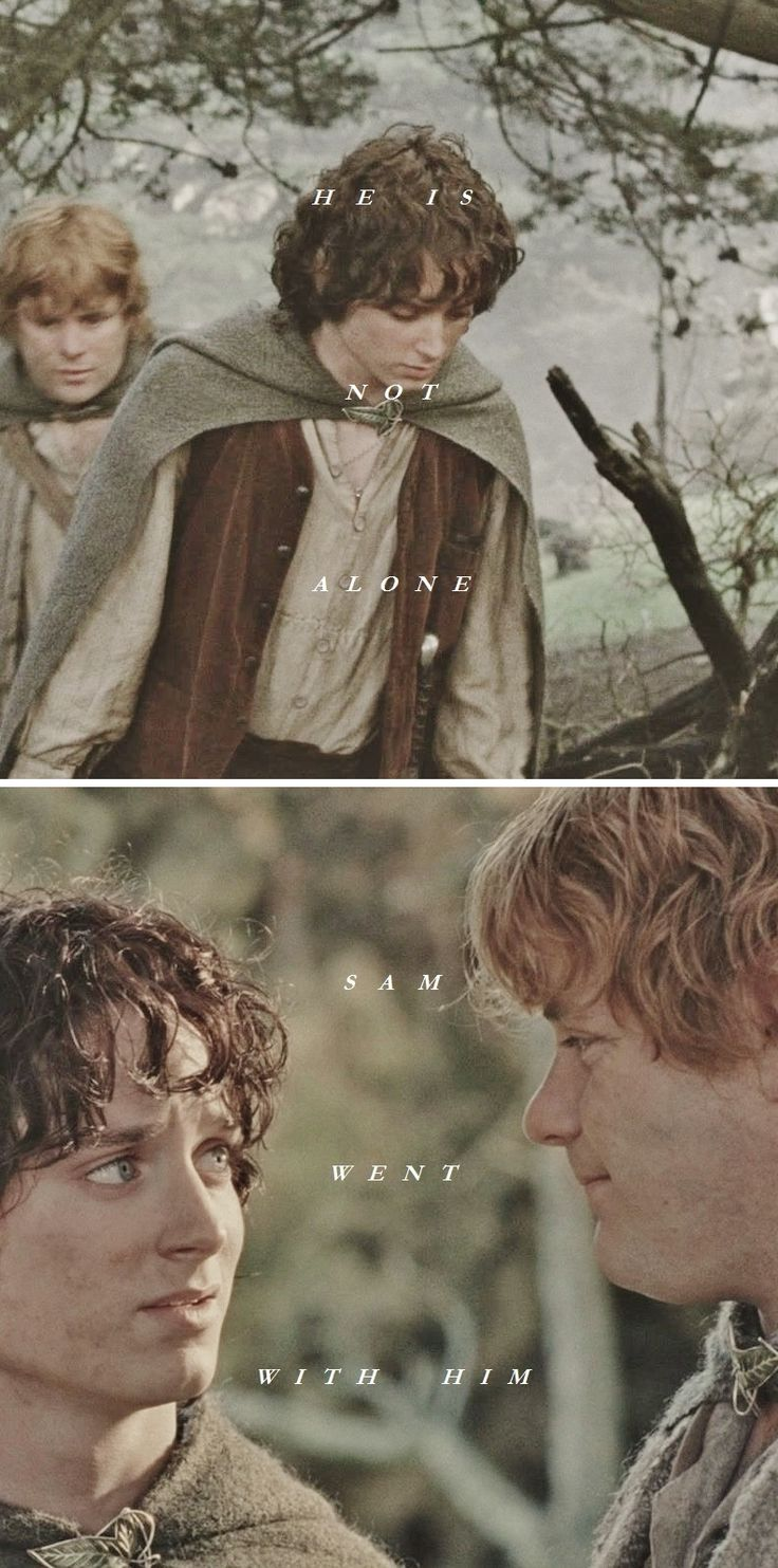 Frodo + Sam: He is not alone. Sam went with him. #lotr