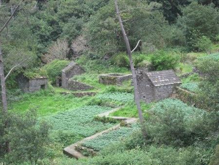 """""""Palheiro""""  - traditional architecture and agriculture in Chão da Ribeira, Madeira Island"""