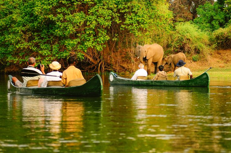 Canoeing down the Zambezi River, Lower Zambezi National Park, Zambia.  Royal Zambezi lodge is an excellent option for accommodation and they offer this activity with trained guides.