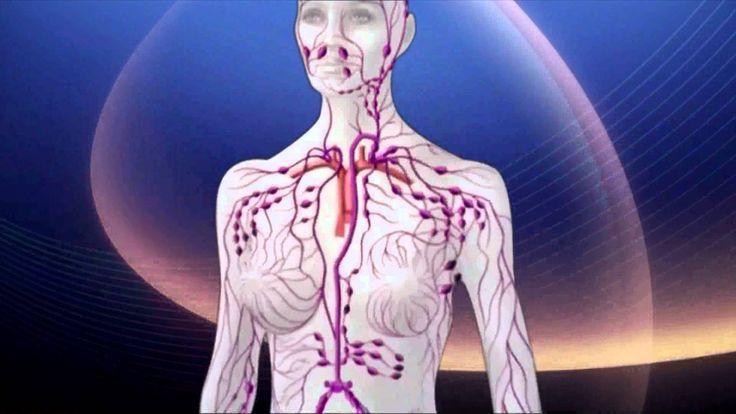 Die Reinigung, Entgiftung und Anregung des Lymphsystems wird dir in kurzer Zeit ein erstaunliches Wohlbefinden schenken. Wie aber reinigt und stimuliert man am besten die Lymphe und das Lymphsystem? Bild: vampy1 / 123RF Lizenzfreie Bilder Eine ganzheitliche Reinigung und Anregung des Lymphsystems ist eine der wichtigsten Massnahmen zur Heilung und Vorbeugung von Krankheiten aller Art.