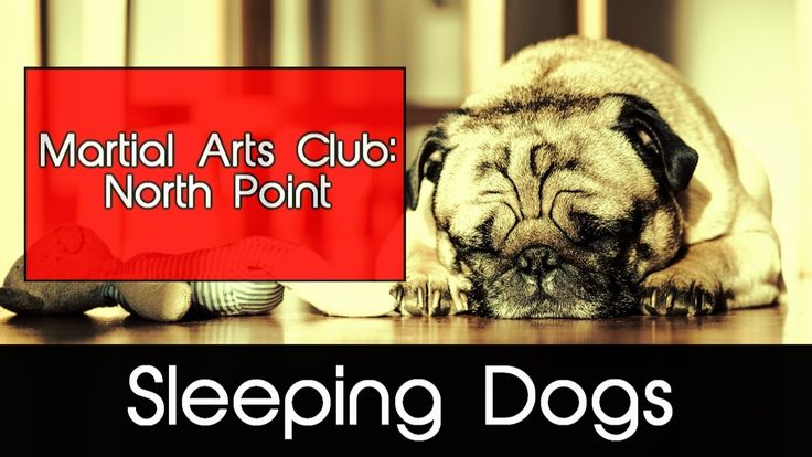 Sleeping Dogs (PS4): Martial Arts Club North Point / Grappling is your f...