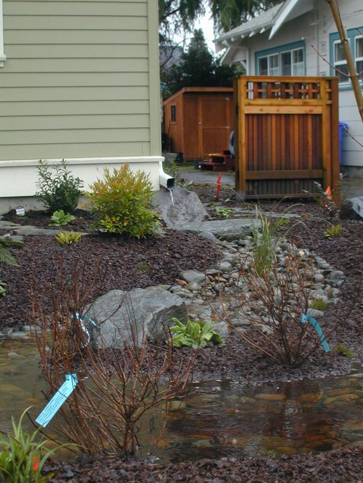Rain garden ideas for redirecting rain water into the for Outdoor drainage solutions