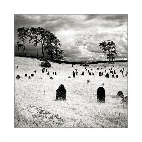 Curragh Graveyard, Co Kildare by Martins Photo Scrap Book, via Flickr