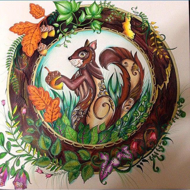 440 Best Images About Enchanted Forest Johanna Basford On