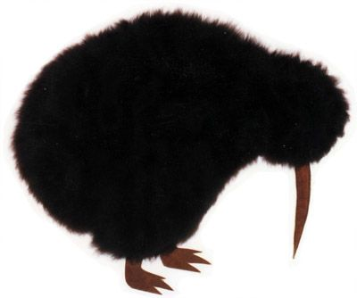 Kiwi Bird Pyjama Case - Kids Cushion - Small | Shop New Zealand NZ$ 69.90