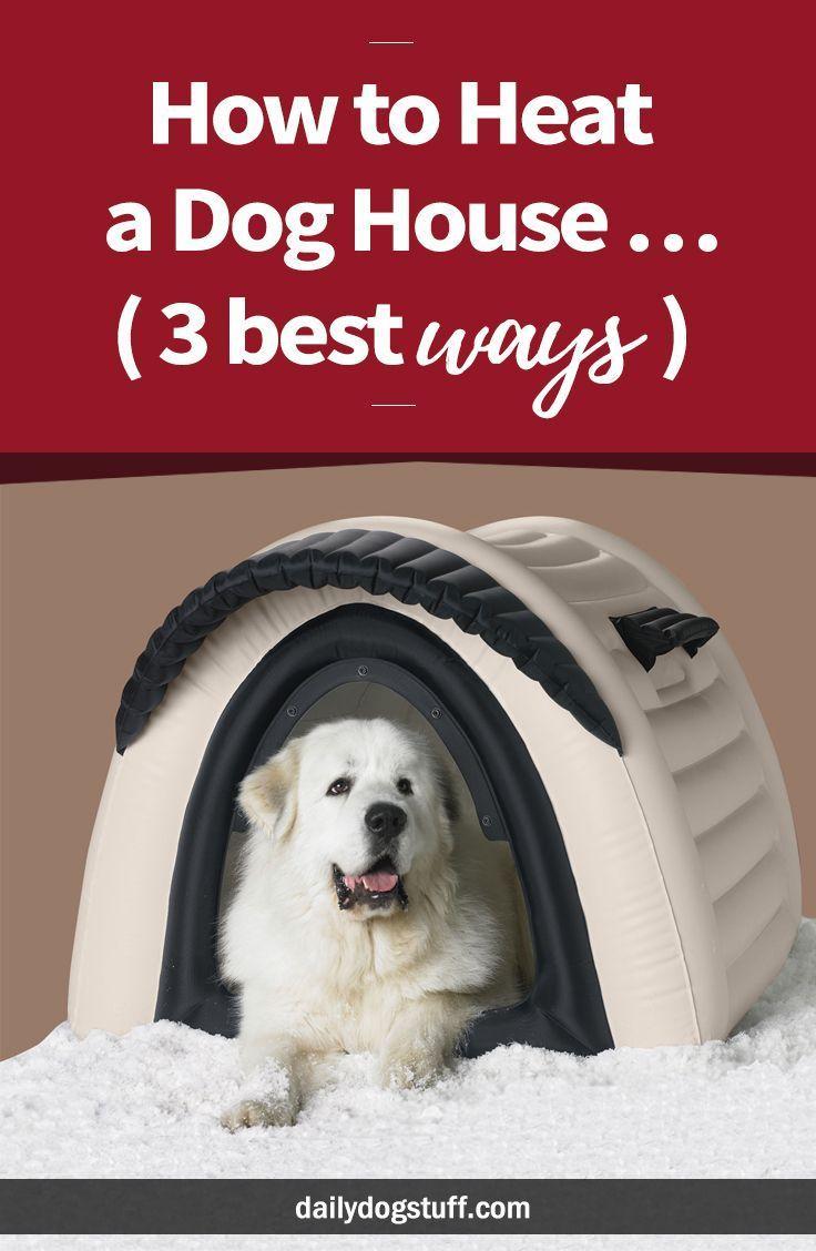 How To Heat A Dog House 3 Best Ways Warm Dog House Winter