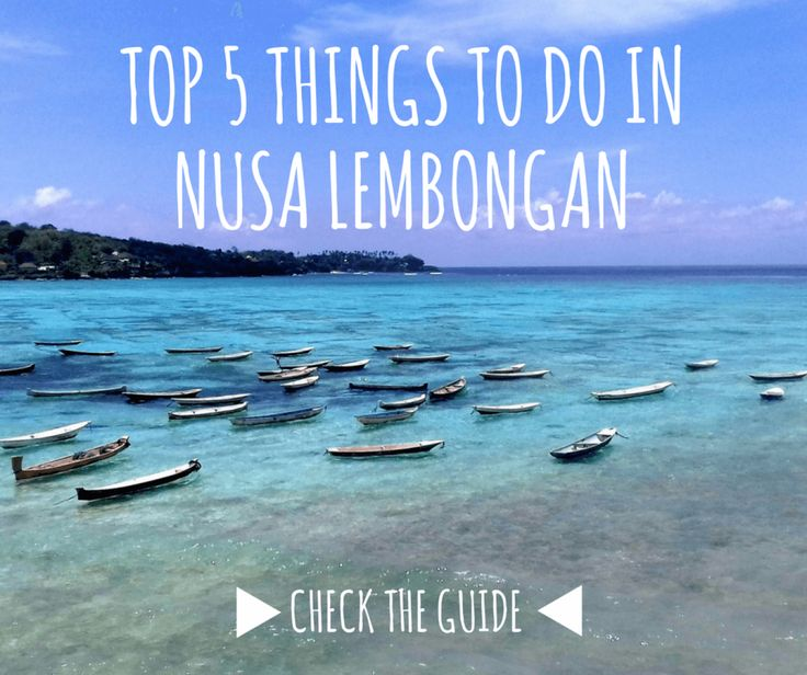 Check the ultimate guide to Nusa Lemongan. How to get there, where to stay and what to do there. See more travel tips here: 101wordsoftravel.com