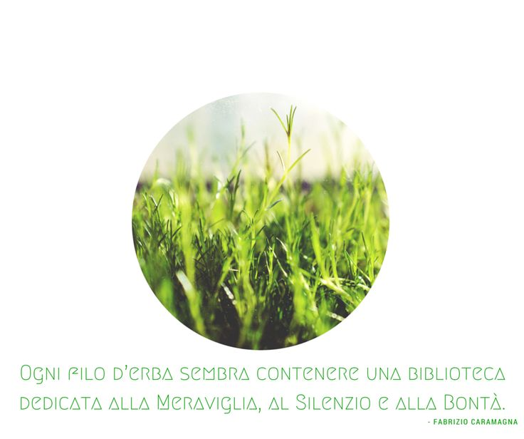 Quote by Fabrizio Caramagna #quotes #quote #aforismi #nature #natura #flowers #citazioni #naturequotes
