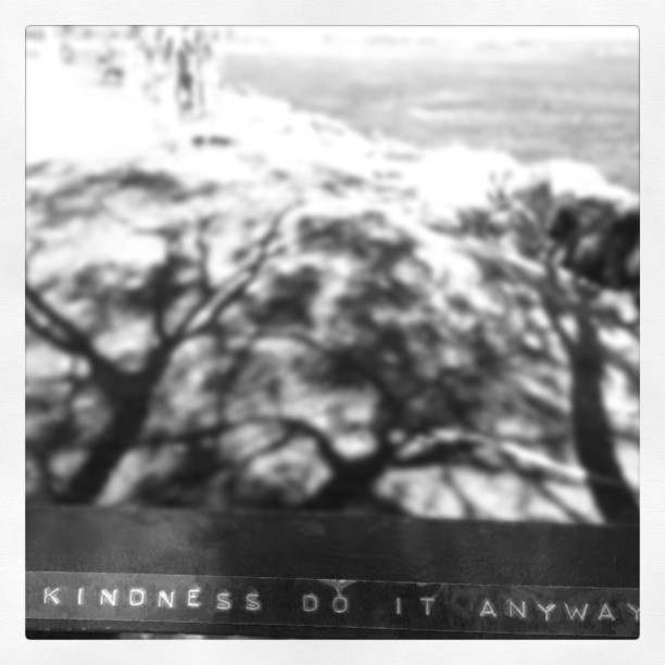 #hopebomb - kindness do it anyway - riverside seat