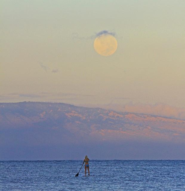 Perdido Key Fl Kayak: 1000+ Images About Paddle Board Shop On Pinterest