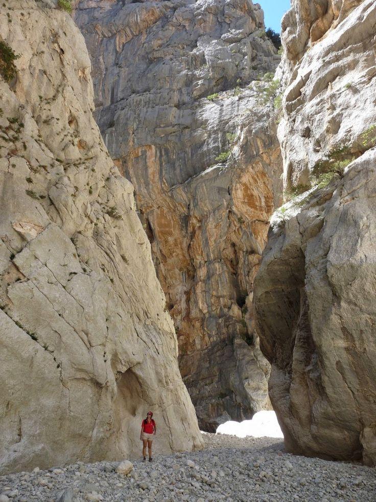 Non solo spiagge in Sardegna: trekking nel canyon Gorropu