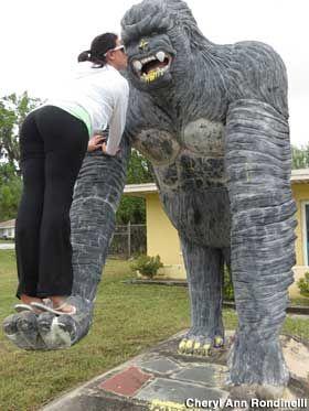 Big Gorilla Statue in Crystal River, Florida.