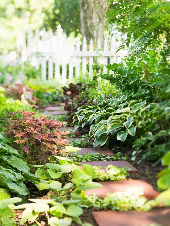 A Shade Garden: Simple pavers create a sense of purpose and destination among a mass of hostas and other foliage plants. https://scontent-b-iad.xx.fbcdn.net/hphotos-ash3/t1/1897876_10152343745161019_2093781424_n.jpg