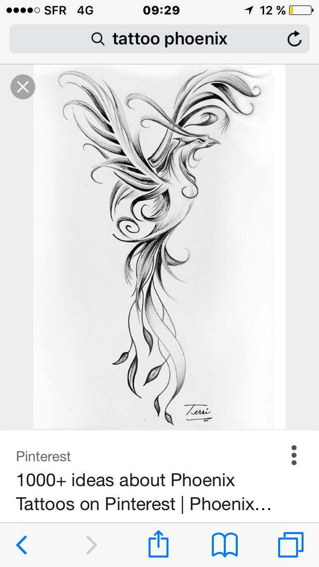 Phoenix Tattoo Tattoo Ideas Pinterest Phoenix Tattoo And