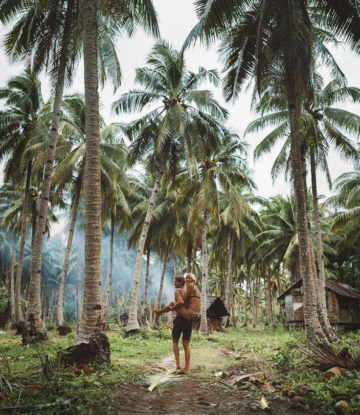 "ebu, Siargao, El Nido, Puerto Princesa Palawan, Sagada, Benguet. - JACK MORRIS (@doyoutravel) on Instagram: ""Daily routine in tropical paradise """