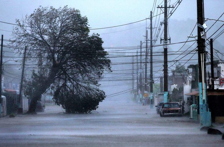 Los huracanes causan caos en la cadena de suministro en Estados Unidos - Webpicking.com