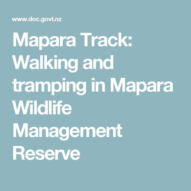 Mapara Track: Walking and tramping in Mapara Wildlife Management Reserve