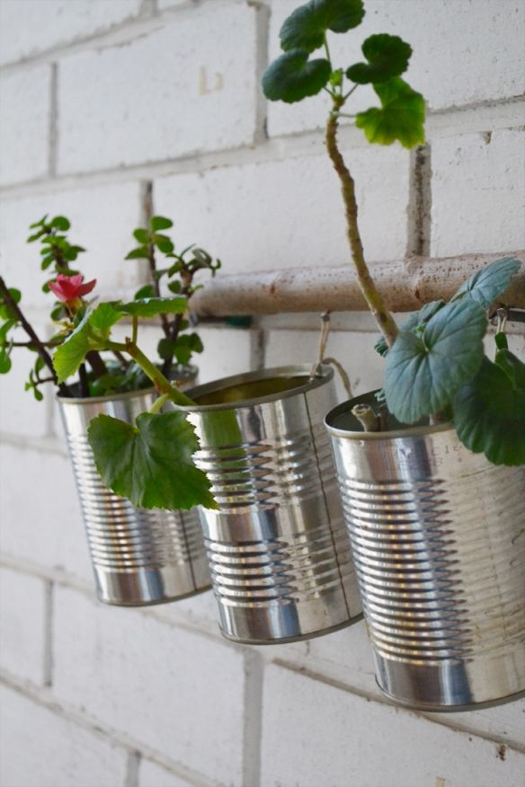 DIY flower nursery .. recycle your tin cans .. from BlueBerry Ash ..