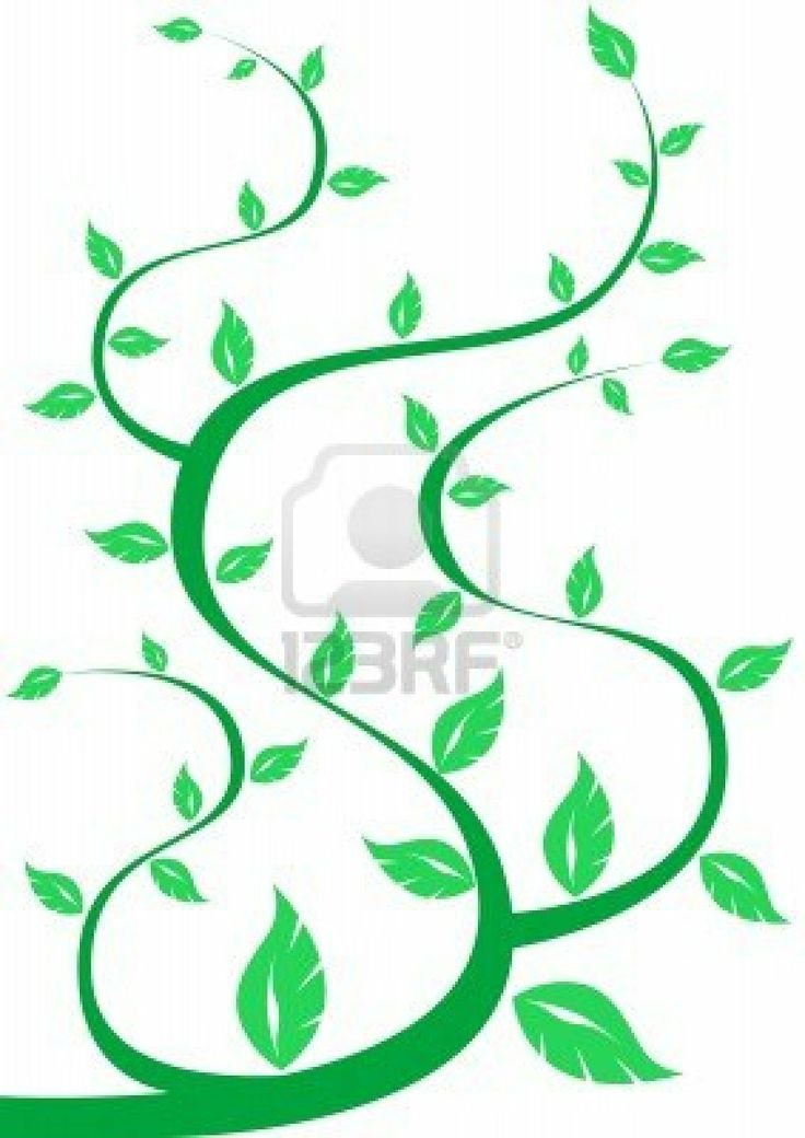 http://us.123rf.com/400wm/400/400/grynold/grynold1001/grynold100100029/6182173-drawing-tree-branches-with-leaves-on-an-abstract-background.j...
