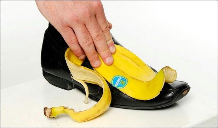 Natural shoe polish