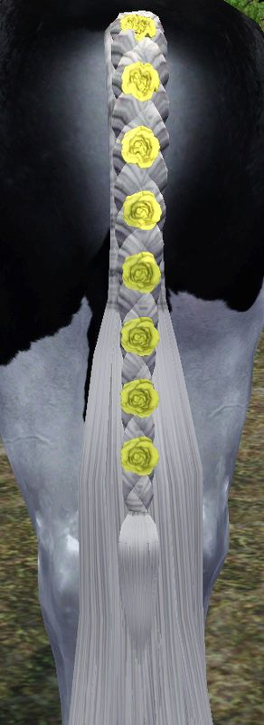 braided tail with flowers - by Sugars Legacy Stables