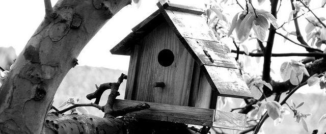 Construire une cabane avec votre enfant      (CC Attribution 2.0 Générique)