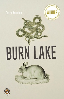 Burn Lake weaves together the experience of life in the rapidly changing American Southwest with the peculiar journey of Don Juan de Oñate, who was dispatched from Mexico City in the late sixteenth- century by Spanish royalty to settle the so-called New Mexico Province, of which little was known.