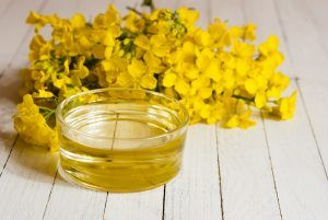Health Benefits of Rapeseed Oil for Children