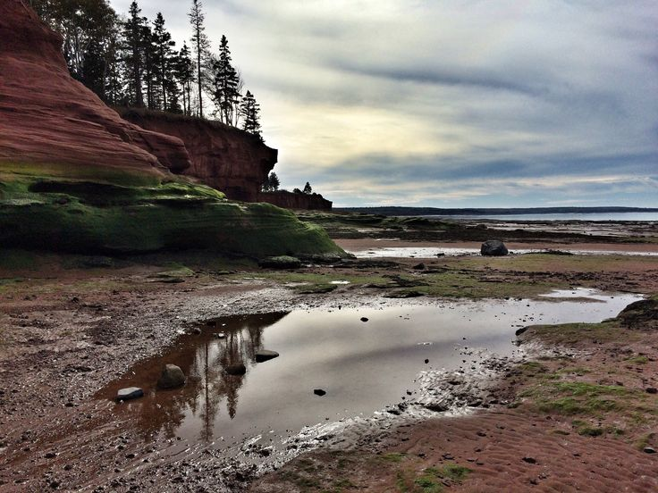 Photo of the bay of Fundy by Elke Pfliegl-Richard