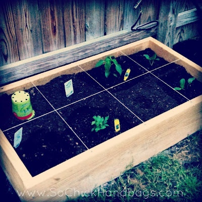 Square Foot Garden 2 Tomatoes Green Bell Pepper 2 Zucchini Garden Beans Cucumber Garlic