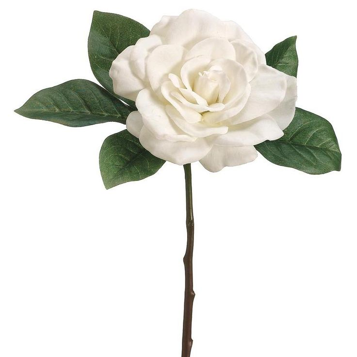 Looking for cream wedding flowers? Beautiful and classic gardenia flower pick in cream with green leaves is a lovely example of a hassle-free silk wedding flower just as pretty and realistic as fresh.