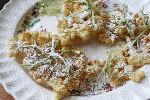 Recipe For Old-Fashioned Elderflower Fritters