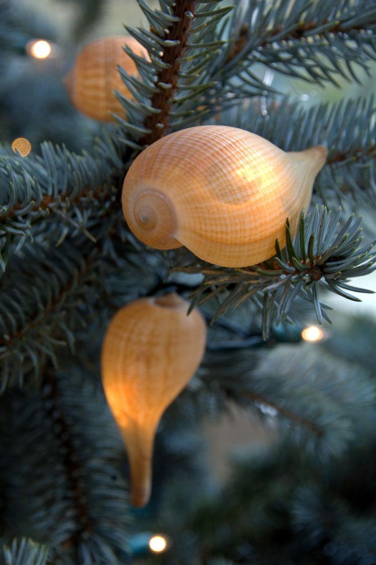 Nautical tree ornaments - Lighting Idea Cover A White Light W A Translucent Sea Shell Beach Christmas Treesnautical Christmaschristmas Lightschristmas Decorationschristmas