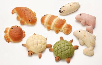 京都水族館の人気者がパンに!  焼きたてのおいしさを毎朝お届け